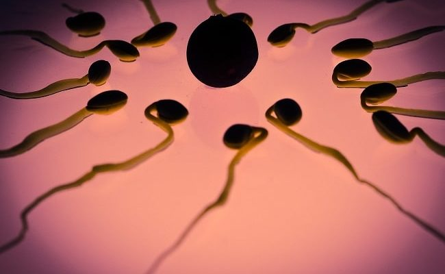 Does Cryopreservation Affect The Quality of Sperm?